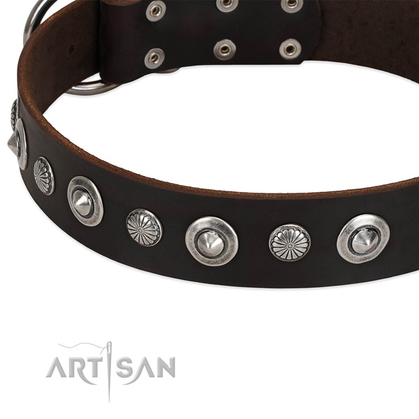 Amazing decorated dog collar of reliable full grain genuine leather