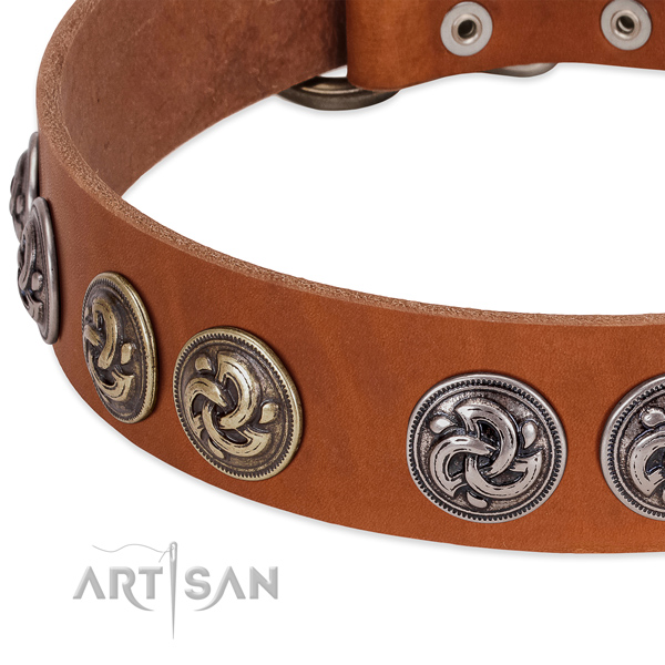 Incredible full grain leather collar for your pet walking