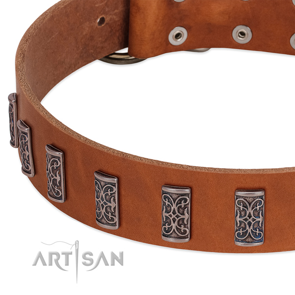 Designer full grain genuine leather dog collar with corrosion proof D-ring