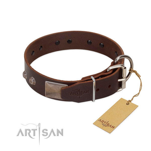 Exceptional natural genuine leather dog collar for everyday walking your pet