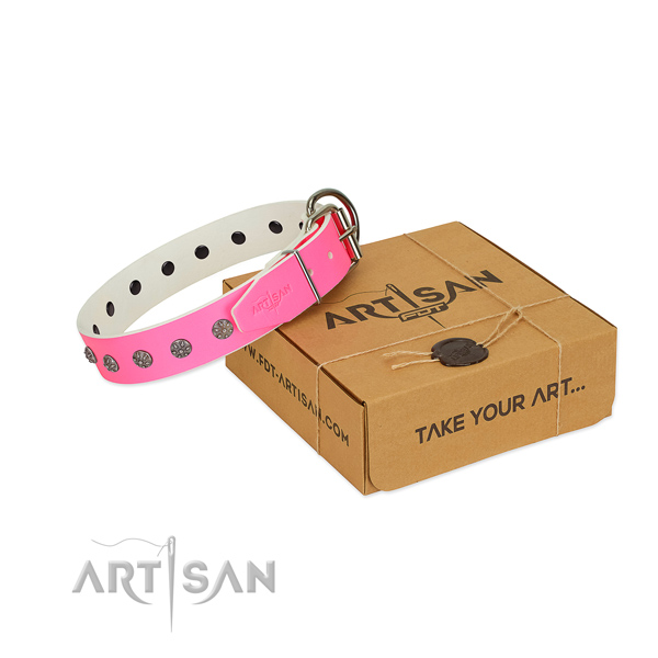Soft natural leather dog collar with adornments for your impressive dog