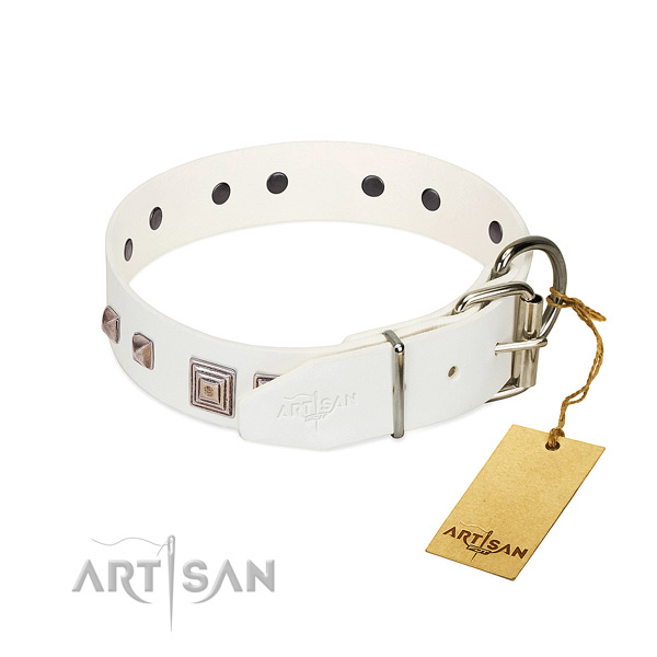 Amazing collar of leather for your handsome doggie