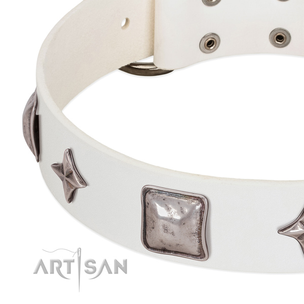 Genuine leather collar with top-notch decorations for your four-legged friend