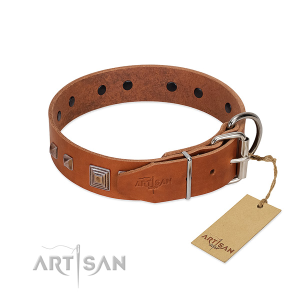 Stylish walking natural leather dog collar with unique embellishments