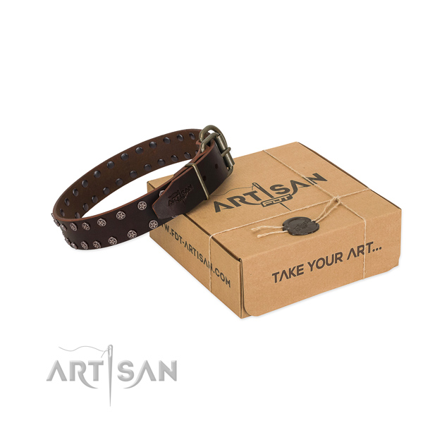 High quality full grain natural leather dog collar with adornments for your stylish doggie
