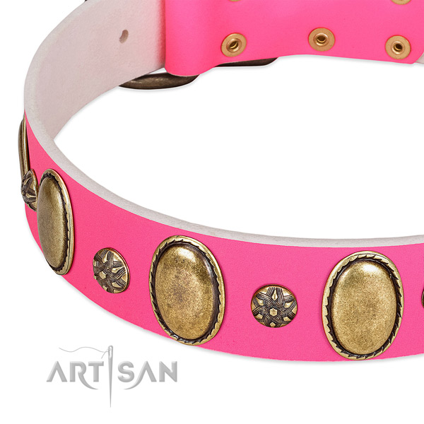 Stylish walking best quality full grain leather dog collar with studs