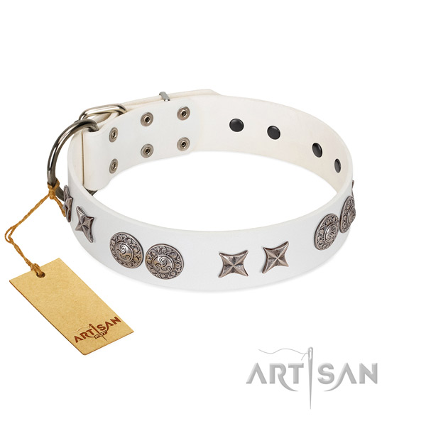 Natural leather collar with designer decorations for your pet
