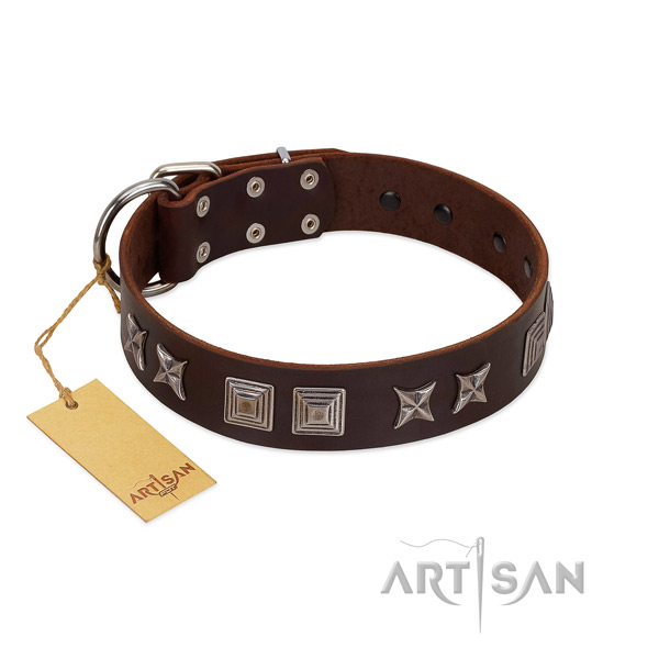 Natural leather dog collar with inimitable studs handmade pet
