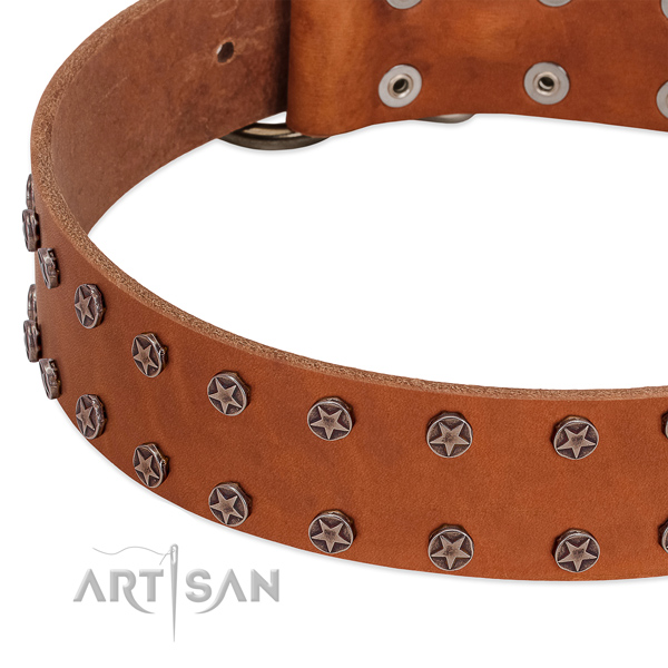 High quality genuine leather dog collar with adornments for your canine