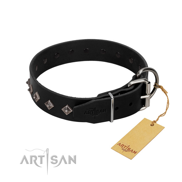 Natural leather dog collar with significant studs for your doggie