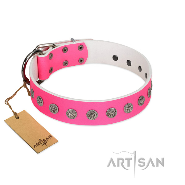Awesome embellishments on leather collar for comfy wearing your dog