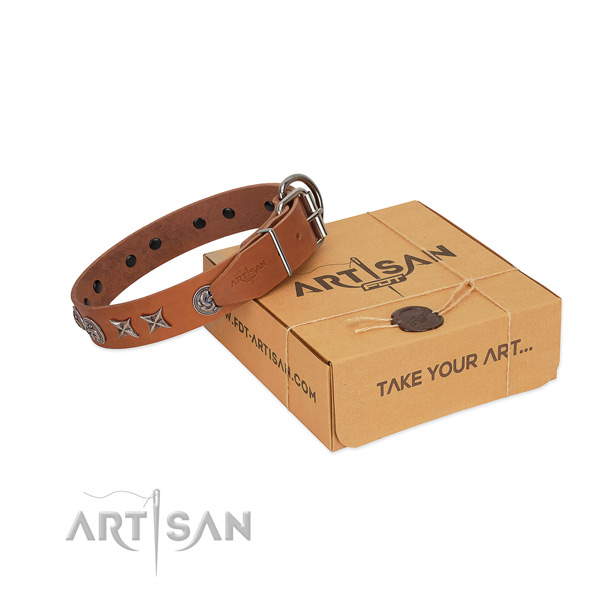 Handy use dog collar of leather with stylish design embellishments