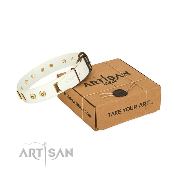 Full grain leather dog collar with exquisite embellishments for everyday walking