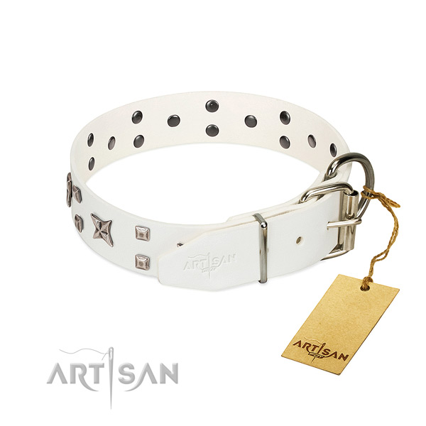 Quality full grain genuine leather dog collar with remarkable embellishments