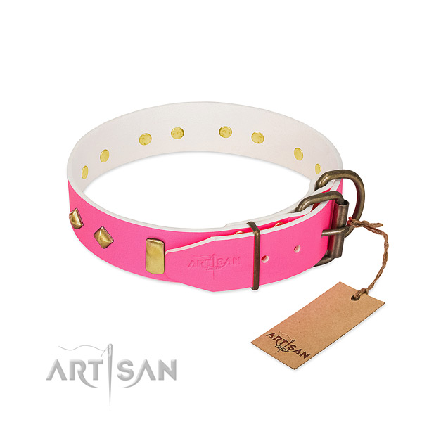 Full grain leather dog collar with rust resistant traditional buckle for daily use