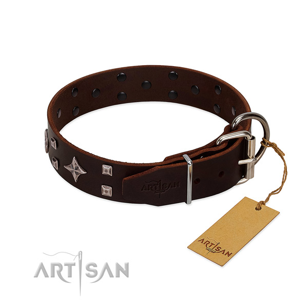 Exquisite full grain leather collar for your dog stylish walks