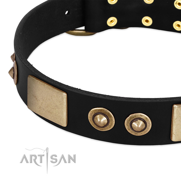 Corrosion proof fittings on leather dog collar for your doggie