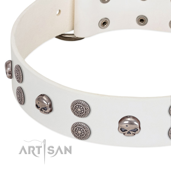 Gentle to touch full grain leather dog collar with unique adornments