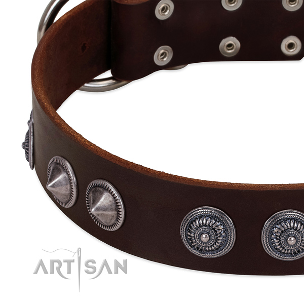 High quality genuine leather dog collar with stunning adornments