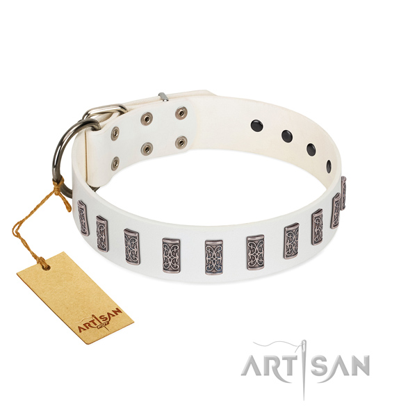 Full grain genuine leather dog collar of quality material with exceptional embellishments