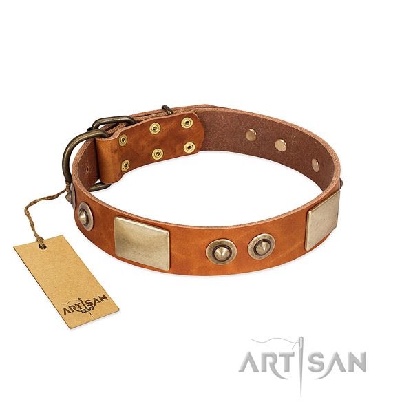 Adjustable leather dog collar for daily walking your dog