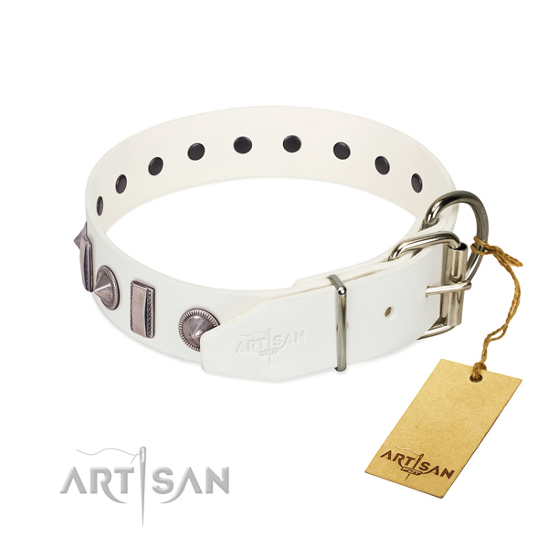 Everyday use full grain leather dog collar with incredible embellishments