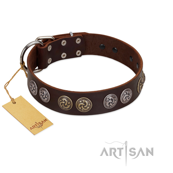 Durable fittings on fashionable genuine leather dog collar