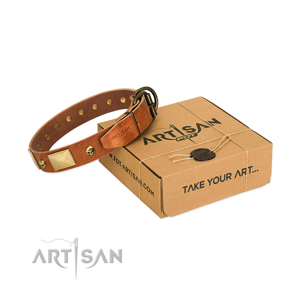 Gentle to touch genuine leather collar with rust-proof embellishments for your canine