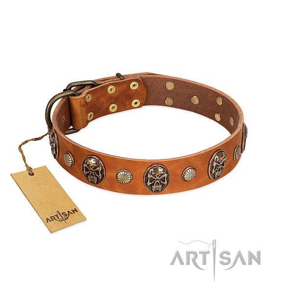 Unique genuine leather dog collar for comfortable wearing