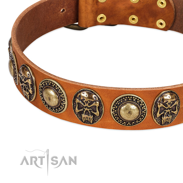 Strong embellishments on natural leather dog collar for your canine