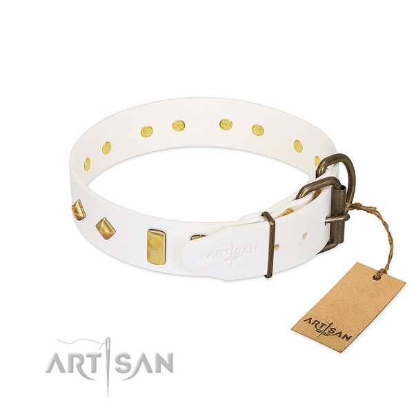 Gentle to touch full grain leather dog collar with strong D-ring