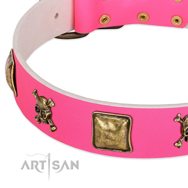 Flexible leather dog collar with amazing embellishments