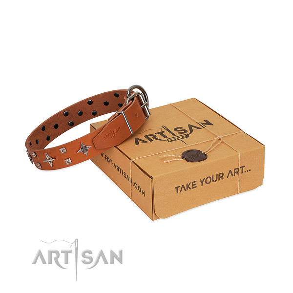 Stunning full grain genuine leather collar for your canine everyday walking