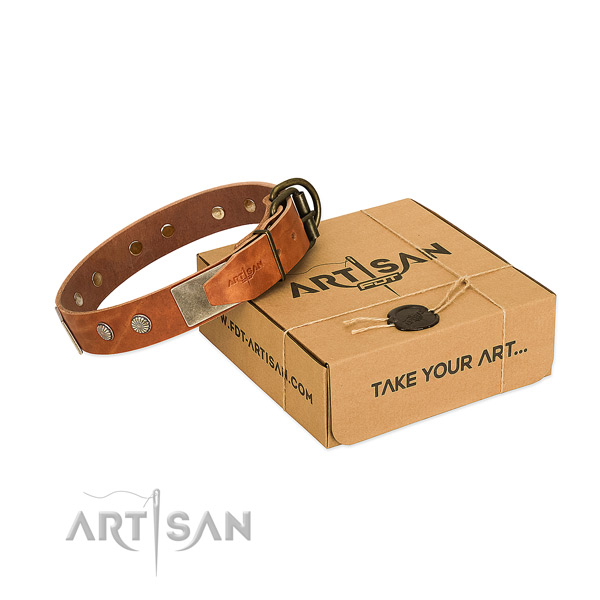 Rust-proof embellishments on dog collar for everyday use