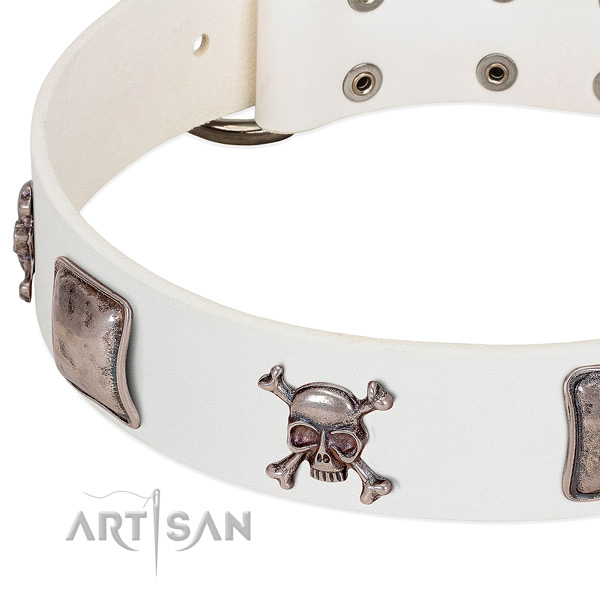 Strong embellishments on natural genuine leather dog collar