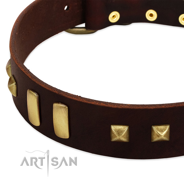 Reliable leather dog collar with studs for handy use