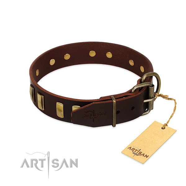Natural leather dog collar with rust resistant traditional buckle for stylish walking