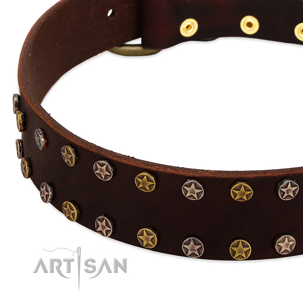 Walking genuine leather dog collar with unique embellishments