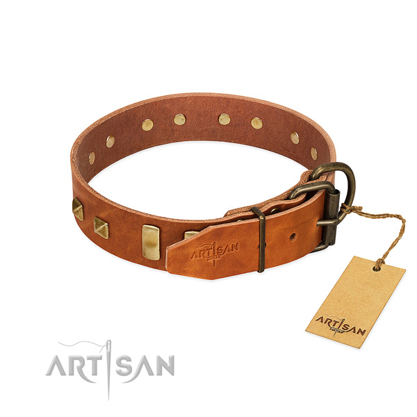 Quality natural leather dog collar with strong hardware