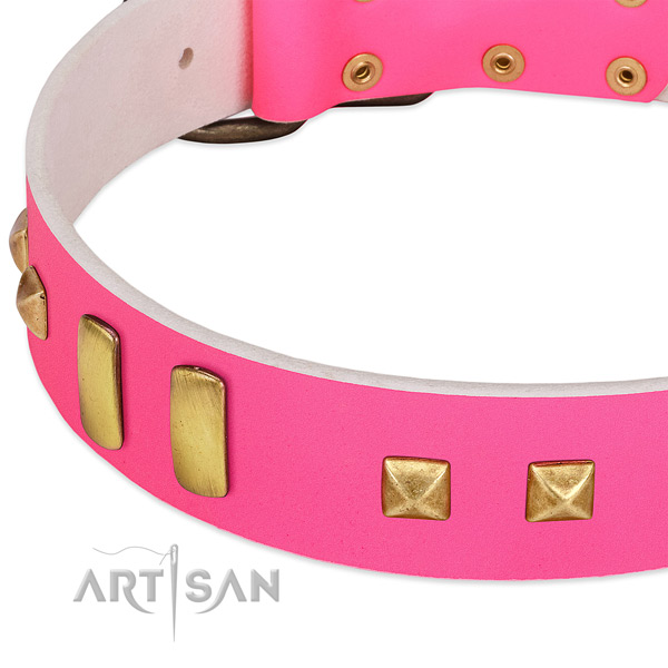 Extraordinary genuine leather collar for your attractive dog