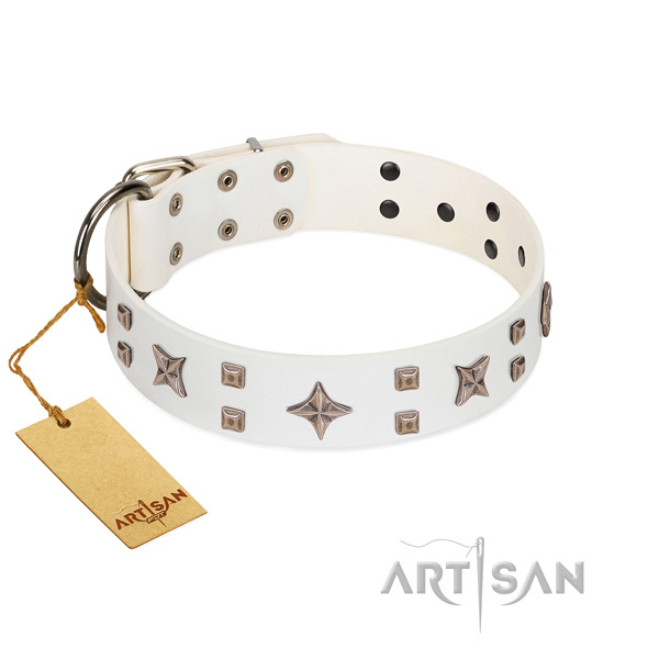 Daily walking genuine leather dog collar with inimitable embellishments