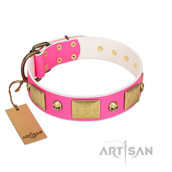 Soft to touch full grain natural leather collar with corrosion proof decorations for your doggie