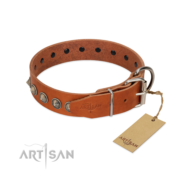 Stunning decorated full grain leather dog collar for everyday use