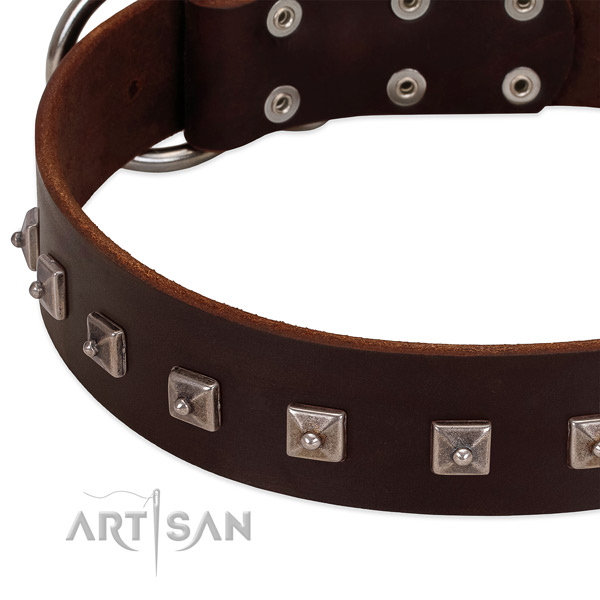 Soft genuine leather collar with studs for your four-legged friend