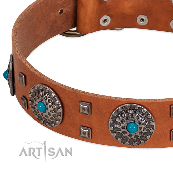 Gentle to touch leather dog collar with extraordinary embellishments