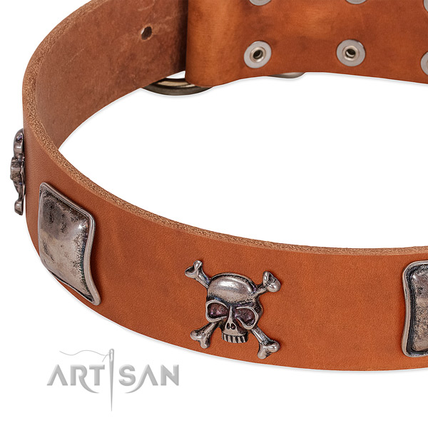 Reliable hardware on genuine leather dog collar