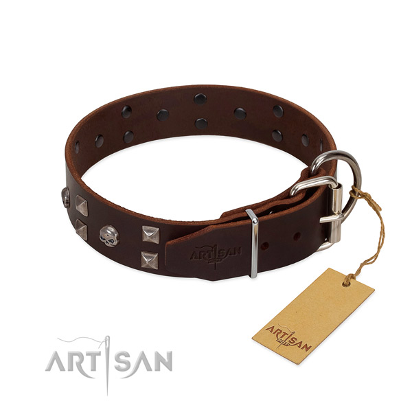 Designer full grain genuine leather dog collar with corrosion proof hardware