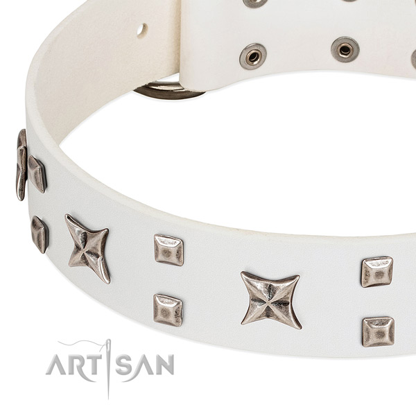 Gentle to touch full grain leather dog collar with studs for daily walking