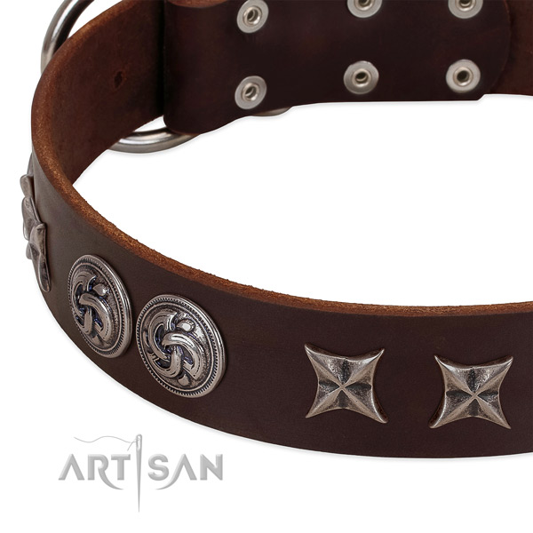 Full grain leather collar with stylish decorations for your four-legged friend