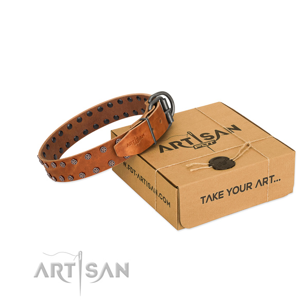 Flexible leather dog collar with adornments for your attractive doggie